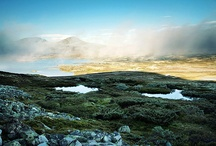 Venabygdsfjellet / Our mountain, next to Rondane National park