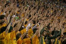 SIC 'EM!!!! / The life and times of a Baylor Bear :) / by Rachael Wilson