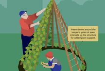 Garden ideas - child, activity, ideas, design