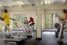Recreation + Wellness / Lawrence Group has focused on recreation and wellness center projects for nearly two decades. Our team of experts inspires medical, academic and local communities through innovation and technology to meet the constantly changing demands of the industry. We work with our clients to enhance the visitor experience and promote a healthy lifestyle.
