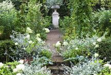 Whites / Garden Design Inspiration