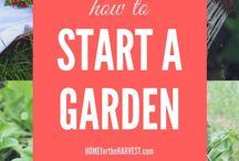 Gardening / Garden planting, care and harvest.