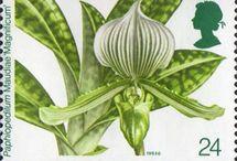 Francobolli orchidee