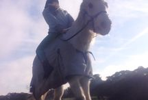 Horse riding / Myself (jayde) and my BFF Sarah riding our horses