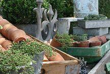 Pots, Tools & Sheds