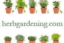 Plants, bulbs, gardens