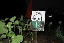 - Guerrilla gardening pelo mundo -   / by Ana-Teresa Alves