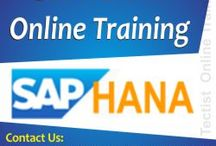 SAP Online Training / SAP online training providing you by real time experts at Tectist. http://www.tectist.com/sap-online-training.