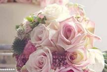 roses#flowers
