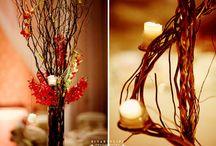 Dream wedding / by Ashly Hilfer