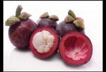 Manggis Reference / Info terkait produk dan khasiat kulit manggis