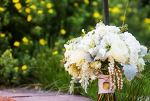 Elegant Mountain Wedding  / by Bluebird Productions