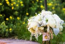 Elegant Mountain Wedding  / by Bluebird Productions
