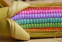 Rainbow Things and Stuff!!