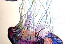 I love Jellyfish / Meduse! Perchè non ci sono esseri più eterei di loro mentre si muovono sospesi nell'acqua...