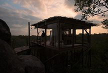 Treehouses of Lion Sands Game Reserve