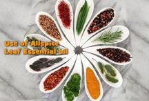 Natural & Herbal