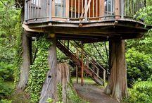 House and garden design