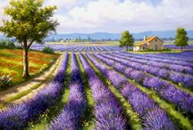 lavender paintings