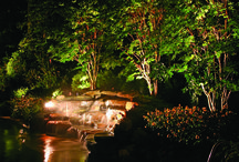 Landscape Lighting Inspiration
