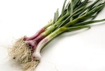 Verdures / Les nostres verdures