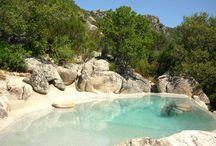 piscine bio design