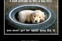 Motivational Meme's / This board displays the collection of motivational meme's we create for our Facebook page, so our friends on Pinterest can also enjoy and even share :)