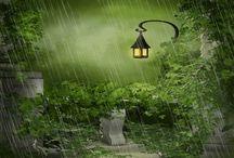 Rainy Daze & Sunshine Gifs