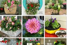 Flower/plant containers