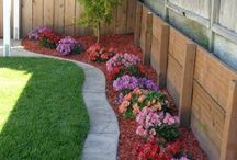 Backyard Dreams / Everyone wants the beautifully landscaped lawn, here are a few ideas!