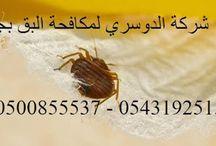 شركة مكافحة البق بجدة 0543192515 بالضمان