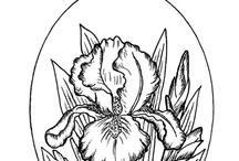 rysunek kwiat