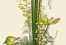 Floral arrangements / by Sarah Beaugez