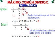 MAXIMO COMUN DIVISOR
