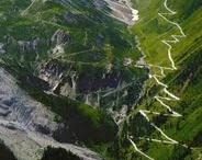i wanna run these crazy roads!! / by Fanny Chu