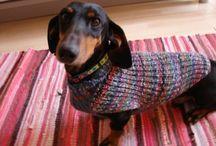 kötött kutya ruha