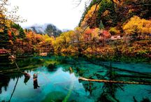 Fall in China