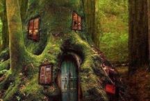 Mystic Tree House
