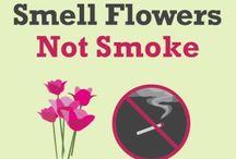 Flower Tips / Flower Tips