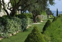 Vacation villas gardens