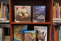 Library displays 2016