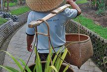 Employee / by KajaNe Bali