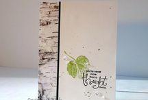 Birch bark cards
