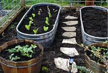 Gardening Projects & Ideas
