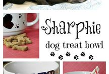 DIY Projects for Your Pet