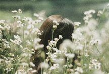 flora / foliage