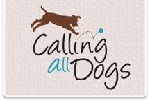 Certified Pet Training