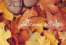 Fall.  / by Hannah Dalpiaz