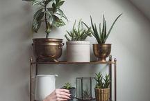 pot , vase, urn,