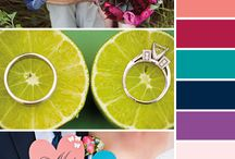Trends 2017 / The latest in trends in color and design.
